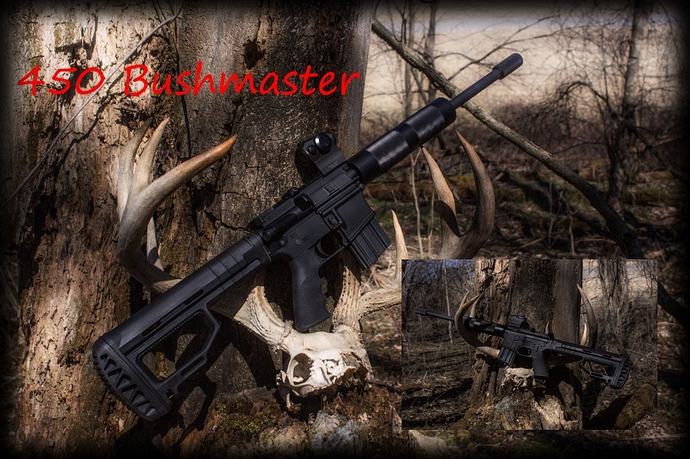 450%20bushmaster%20final%20build_pe%20small%201000
